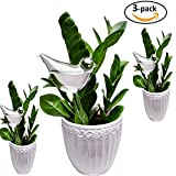 E-kay 3 Pack Plant Waterer Self Watering Globes, Bird Shape Hand Blown Clear Glass Aqua Bulbs Review