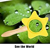 XuBa Kids Wooden Portable Star Magnifier Toy Baby Learning & Education Toy Magnifier Glass Science Experiment Toys