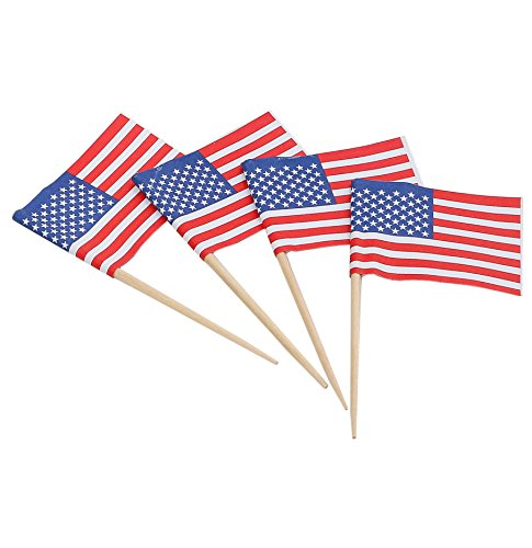 KingSeal American Flag Toothpicks, 2.5 Inch - 10 Packs of 144 per Case, US Flag Picks for Sandwiches, Appetizers, Cupcake Toppers, and More! -