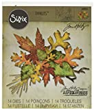Sizzix 660955 Thinlits Die Set, Fall Foliage by Tim Holtz, 14/Pack