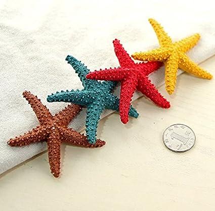 URBeauty 5pcs Colorido Estrellas Decoración Hogar Decoración Acuario Estrella De Mar Mediterráneo Dried Adornos para Boda