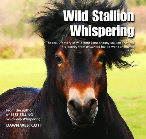 Wild Stallion Whispering: The Real-Life Story of Wild-Born Exmoor Pony Stallion Bear and His Journey from Unwanted Foal to World Champion