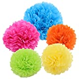 Gold Fortune 15PCS Tissue Hanging Paper Pom-poms Flower Ball Wedding Party Outdoor Decoration Tissue Paper Pom Pom Flowers Craft Kit (Rainbow Mix Colors)