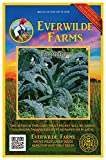 Everwilde Farms - 500 Lacinato Kale Seeds - Gold Vault Jumbo Seed Packet