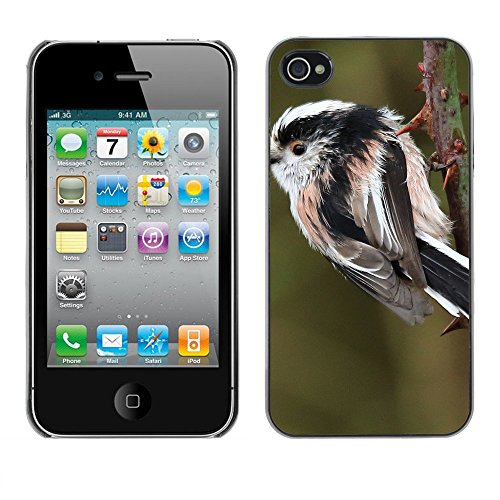 Premio Sottile Slim Cassa Custodia Case Cover Shell // F00014889 oiseau // Apple iPhone 4 4S 4G
