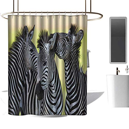 Shower Curtains for Kids Bathroom Unisex Wildlife Animal Decor Collection,Zebras Safari Wild Nature Picture Print,W48 x L84,Shower Curtain for Shower stall (Footstool Zebra Print)