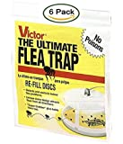 Victor M231 Ultimate Flea Trap Refills, (2 Packs of 3 Refills)