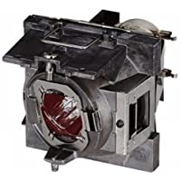 ViewSonic RLC-108 Projector Lamp