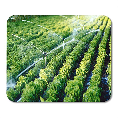 (Semtomn Mouse Pad Green Agriculture Irrigation System in Function Watering Agricultural Plants Mousepad 9.8