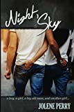 Night Sky: a first loves novel