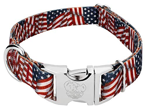 Country Brook Design Patriotic Tribute Premium Dog Collar - Large
