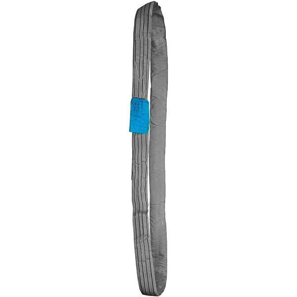 4t-3m 030123006117 Eslinga Tubular//Redonda de Poli/éster de Alta Tenacidad 4000 Kilos de resistencia y 3 metros lineales 6 metros de circunferencia PONSA