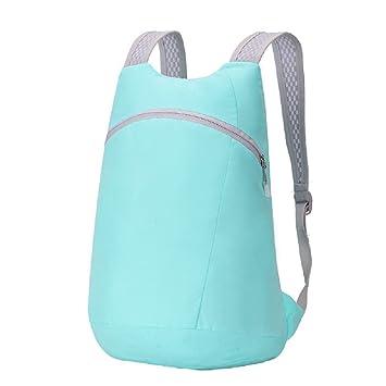 hhGold Nueva mochila de alpinismo al aire libre bolsa de viaje de ocio Mochila de nylon resistente al agua mochila de publicidad plegable (Color : Azul): ...