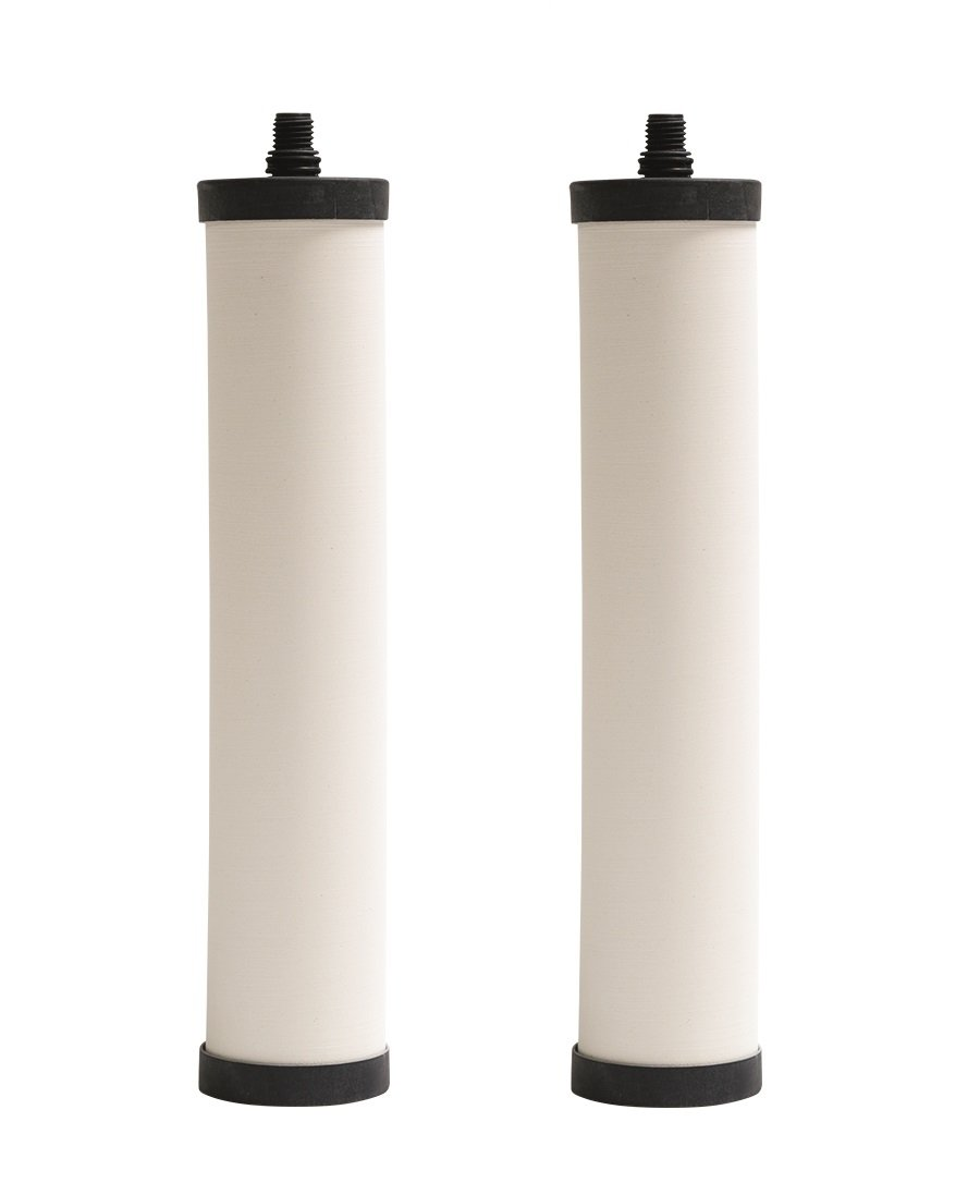 Franke FRC06-2PK Undersink Water Filtration Filter for FRCNSTR, Chlorine, 2-Pack