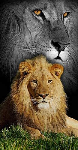 Lion King Den Cat Terry Velour Beach/Bath Towel