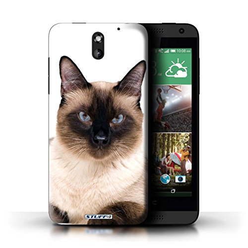 STUFF4 Phone Case / Cover for HTC Desire 610 / Siamese Design / Cat Breeds Collection