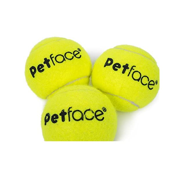 Petface Tennis Balls for Dogs, 12-Piece 2