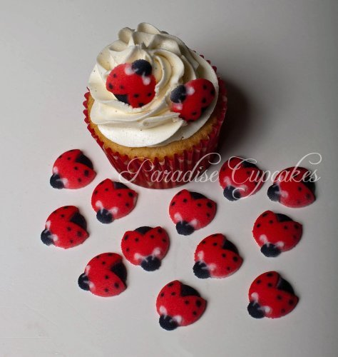 12 Ladybug - Set of 12 Edible Sugar Ladybug Toppers for Cakes or Cupcakes