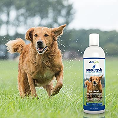 Dog Shampoo & Conditioner All In One- Cleans, Conditions, Deodorizes, Detangles & Moisturizes; Best Dog Shampoo: Provides Itch Relief & Allergy Relief: Veterinary Grade Strength