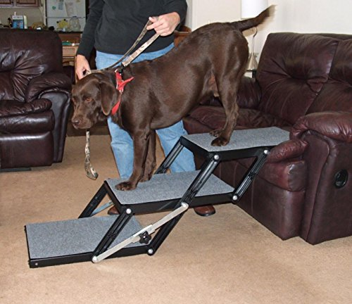 Pet Loader® Light 16″ Platform, 3-Step Review
