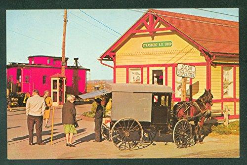 (STRASBURG Railroad AMISH HORSE AND BUGGY Train PA Postcard)