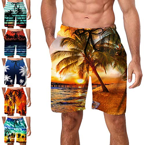 Mens Stylish Swimming Trunks Beach Volleyball Shorts Loose Fit Swim Shorts Elastic Waist (Style A6, X-Large)