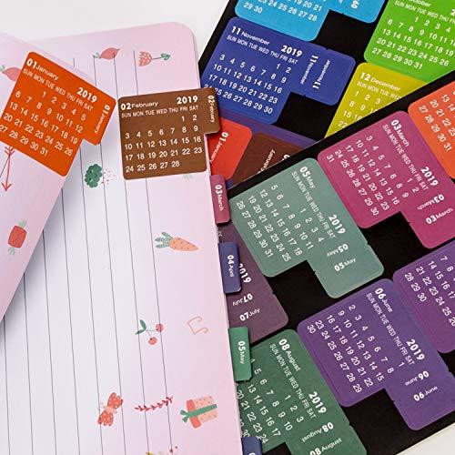 Amazon.com: AIEX 2019 Calendario Pegatinas Mensual ...