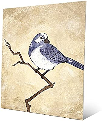 Amazoncom Little Birdie Bluebell Line Drawing Of Blue