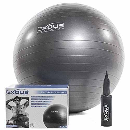 exercise-fitness-yoga-core-stability-balance-ball-65cm-anti-burst-with-professional-online-videos-2-
