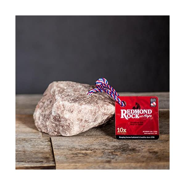 REDMOND - Rock on a Rope Unrefined Salt Rock for Horses 3 to 5 lbs (3 Pack) 5