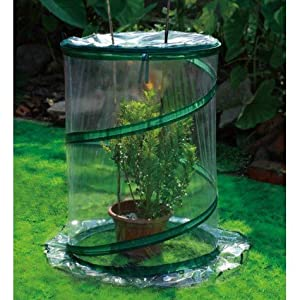 Portable Single Plant Mini Greenhouse Kit, A Protection For Small Plants,  Itu0027s Heavy Duty Clear Vinyl Cover Is Supported By A Steel Spiral Spring, ...
