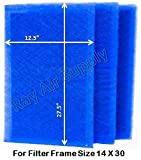 RayAir Supply 14x30 Dynamic Air Filter (3 Pack) (14x30)