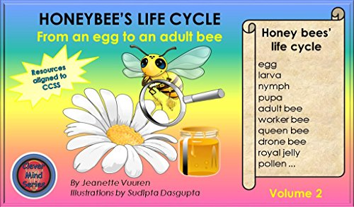 Amazon.com: Science: Honeybee\'s Life Cycle Volume 2, honey bees ...