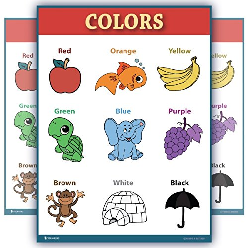 Learning colors educational poster Laminated chart for toddlers preschool edu