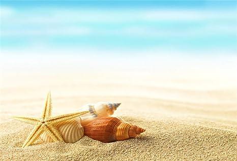 Yongfoto 15x1m Vinile Sfondo Fotografico Spiaggia Stella Di Mare