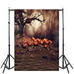 YOcheerful Halloween Backdrops Pumpkin Lantern Background Photography Studio