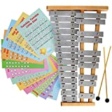 Glockenspiel 25 Note G-G Tuned Chromatic Xylophone - Educational Musical Instrument Percussion, Sheet Music Cards