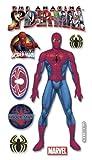 The Amazing Spiderman By Ek Success
