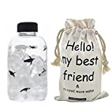 Mr.Mug & Ms.Cup Glass Water Bottle with Penguin Print,Cute Animal Borosilicate Glass Bottle with Bottle Carry for Juicing, Beverage Storage,Perfect for Outdoor,School 600ml/21.2oz