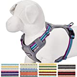 Blueberry Pet 9 Colors Soft & Comfy 3M Reflective Multi-colored Stripe Padded Dog Harness Vest - Chest Girth 16.5