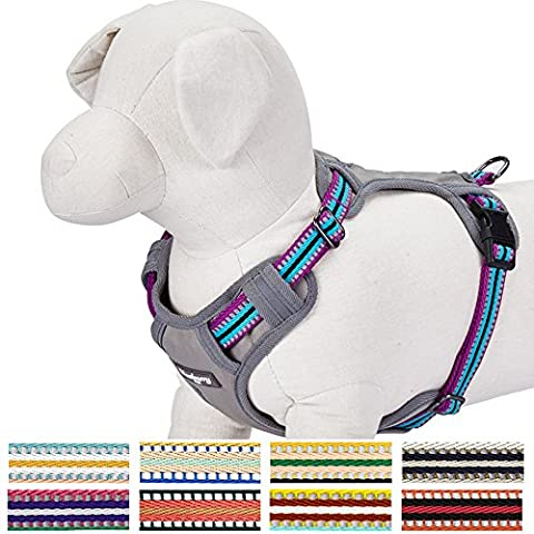 Blueberry Pet 9 Colors Soft & Comfy 3M Reflective Multi-colored Stripe Padded Dog Harness Vest, Chest Girth 21