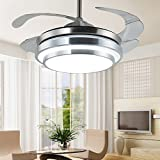 RLYYBE Ceiling Lamp Modern and Romantic Fan Led Ceiling Light with Stainless Steel and Acrylic Shade for Living Room Bedroom Studying Room Dining Room Entry Hallway Kitchen Diameter 400mm*150mm