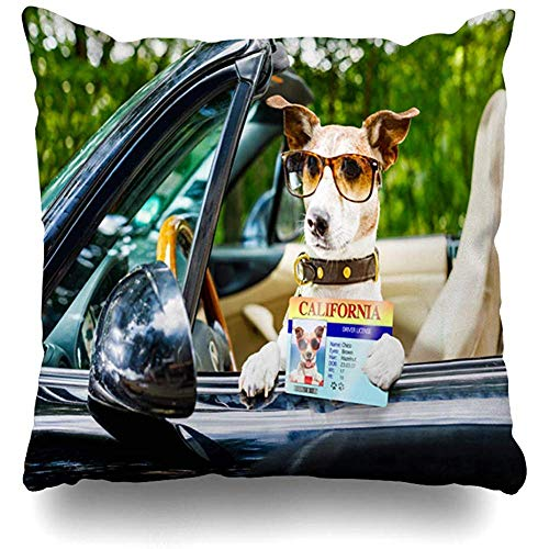 - Throw Pillow Cover Square 18x18 Inches Terrier License Jack Russell Dog Car Close Steering Happy Sports Recreation Auto Automobile Belt Cushion Pillow Case Home Decor Covers