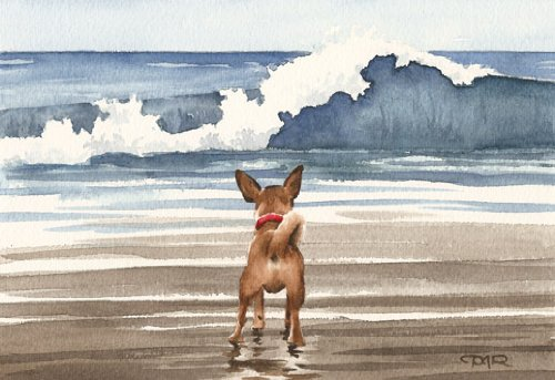Chihuahua At the Beach Art Print By Watercolor Artist DJ Rogers