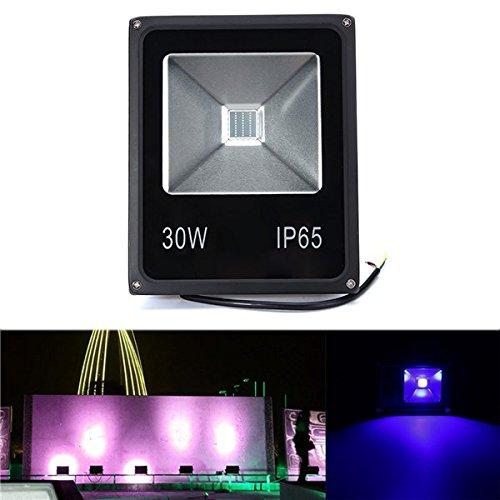 HTAIYN 30W UV LED Projektor Flutlicht 365 375 385 395 405   415NM im Freien Wasserdichte Lampe AC85-265V Außenbeleuchtung (Farbe   395NM)