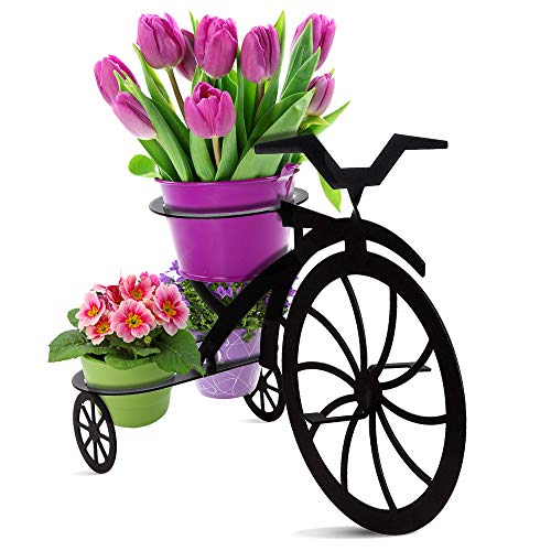 (Decorative Bicycle Metal Plant Stand & Flower Pot Holder | Modern Outdoor & Indoor Plant Holder | Great Gift for Plant Lovers)