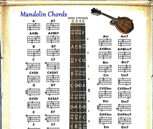 Compare Price: mandolin chord chart poster - on StatementsLtd com