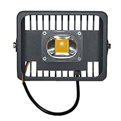 Zesol 30W LED Flood Light Ac110v Daylight White 6000K IP65 Waterproof Security Light Outdoor Spotlight
