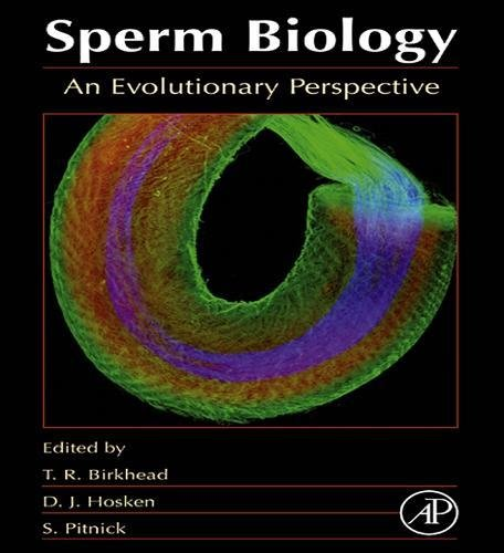 perspective of a sperm Evolutionary biologists think female orgasms may pick the best sperm psychology today the orgasm wars which we believe adds an invaluable perspective.
