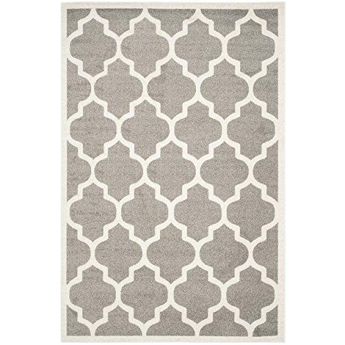 Safavieh Amherst Collection AMT420R Dark Grey and Beige Indoor/ Outdoor Area Rug (6' x 9')